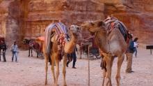 Израел и Йордания Есен 2019 Докосване до древността