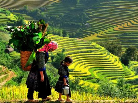 Очарованието на  Индокитай - Едно пътешествие из Виетнам,  Камбоджа и Лаос